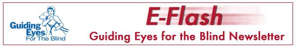 E-Flash: Guiding Eyes for the Blind Newsletter